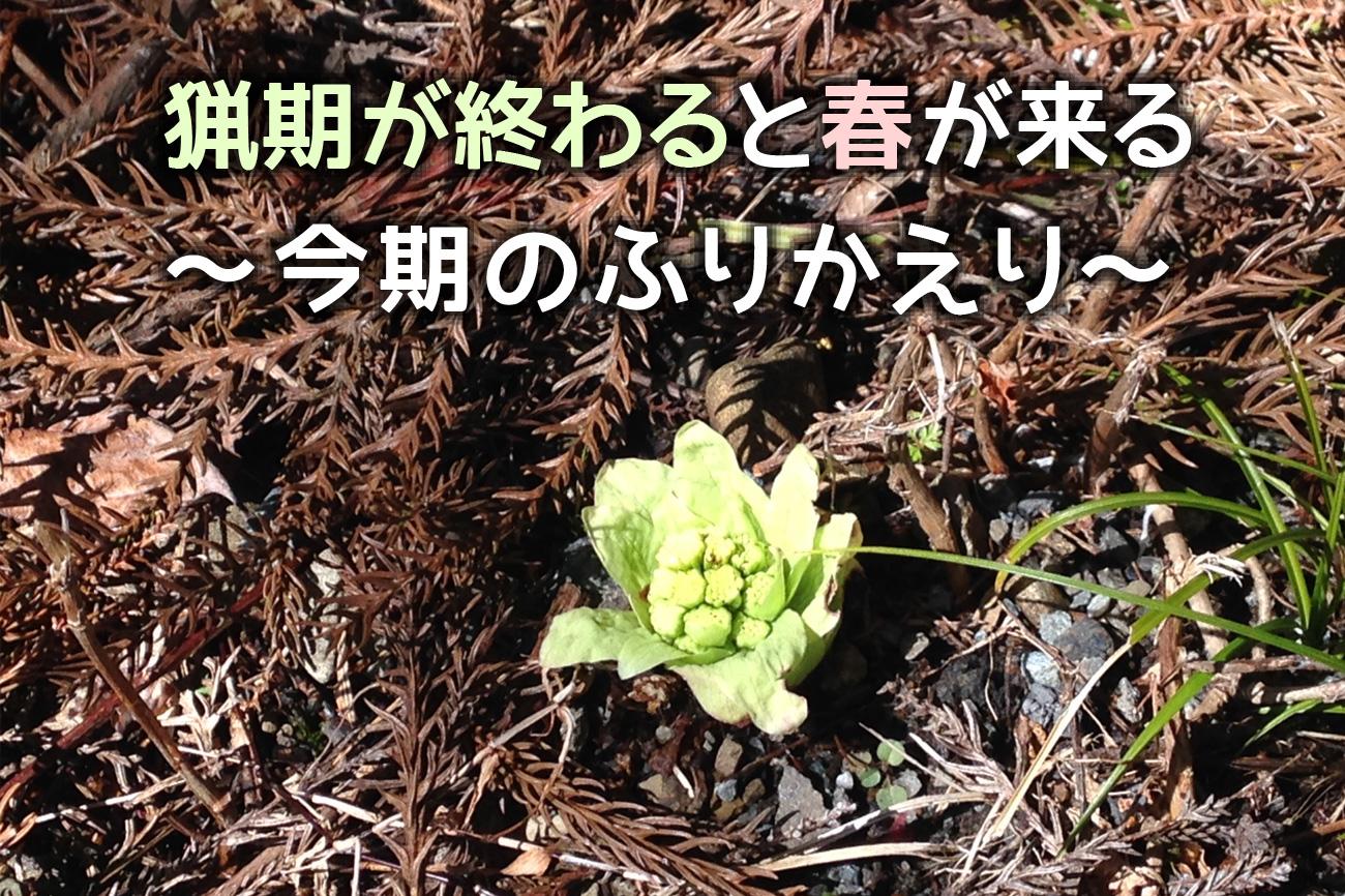 猟期が終わると春が来る ~今期のふりかえり~